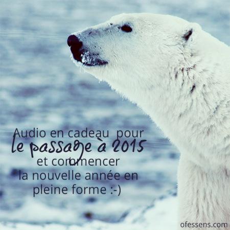 Ours-polaire-2015-audio-en-cadeau