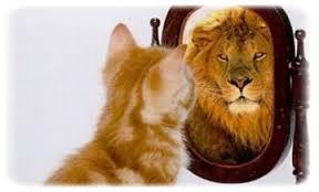 Lion développer une meilleure estime de soi